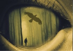 Sixth Sense Image