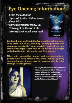 Spirit Nudges back cover.jpg